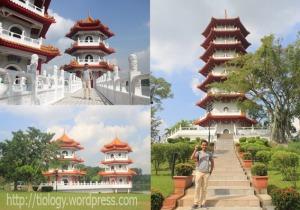 Chinese Garden : Twin Pagoda - Pagoda Utama